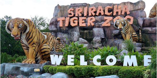 Công viên Tiger Zoo