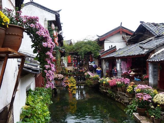 Cảnh đẹp của Lệ Giang