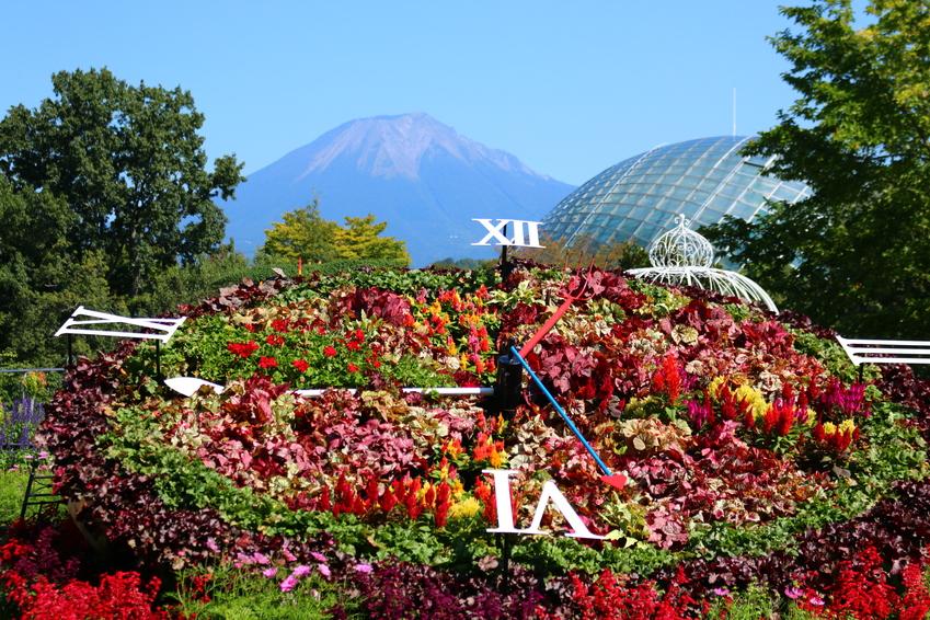 Công viên hoa Tottori Hanakairo
