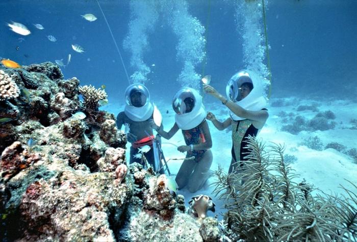 Qúy khách khám phá tìm hiểu về san hô ở đáy biển